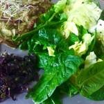 Merveilleuses Algues - Recette